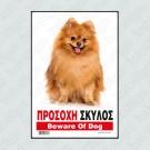 ΠΡΟΣΟΧΗ ΣΚΥΛΟΣ / BEWARE OF DOG